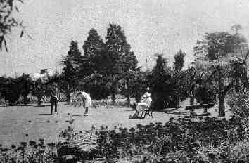 Croquet at Bailie's property Early 1900's